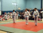 Taekwondo comp 040710 114