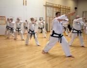 blackbelt training sep 09 021