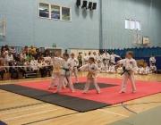 Taekwondo comp 040710 024