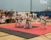 Taekwondo comp 040710 040