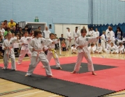 Taekwondo comp 040710 051