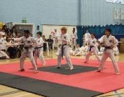 Taekwondo comp 040710 054
