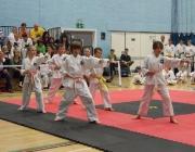 Taekwondo comp 040710 069