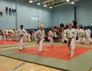 Taekwondo comp 040710 105