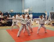 Taekwondo comp 040710 128