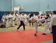 Taekwondo comp 040710 176